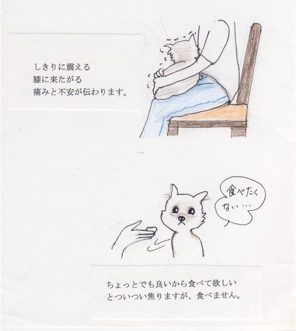 Image00741