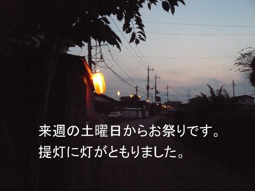 P10300491